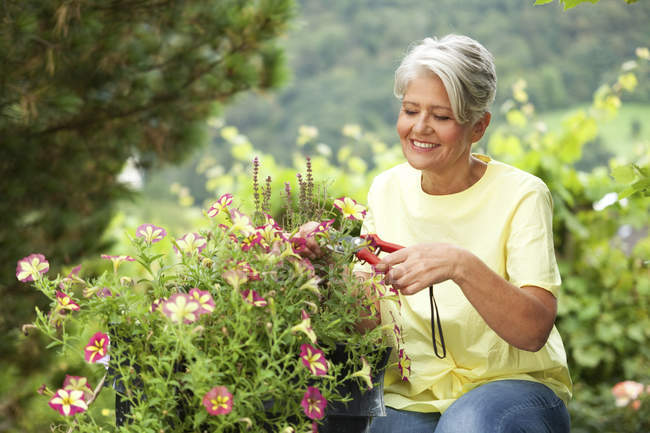 Mature woman cutting flowers with a pruner — Stock Photo
