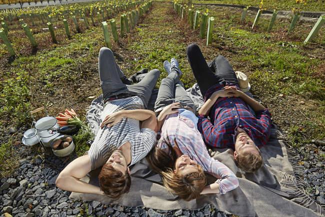 Entspannte Freunde liegen auf Decke in Landschaft — Stockfoto