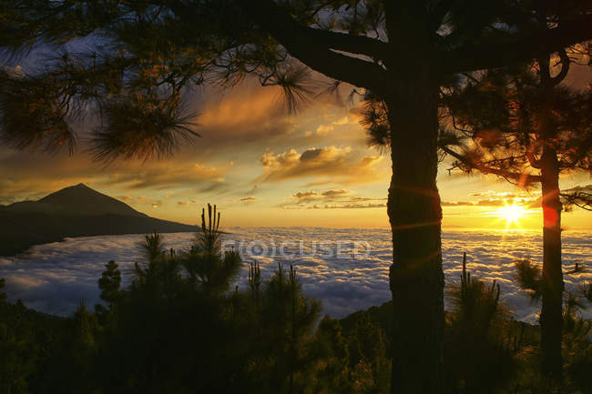 Canary Islands, Spain and any landmass in the Atlantic Ocean. — Stock Photo