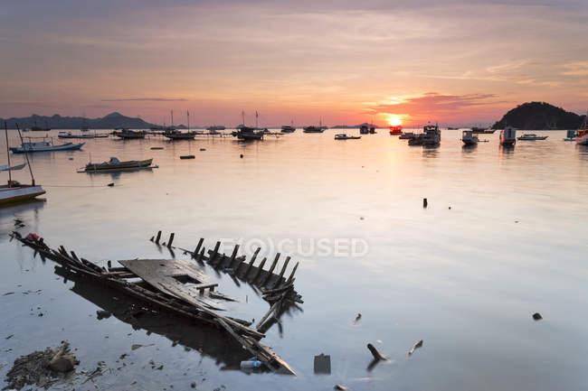 Indonesia, Nusa Tenggara Timur, Labuan Bajo, port at twilight - foto de stock