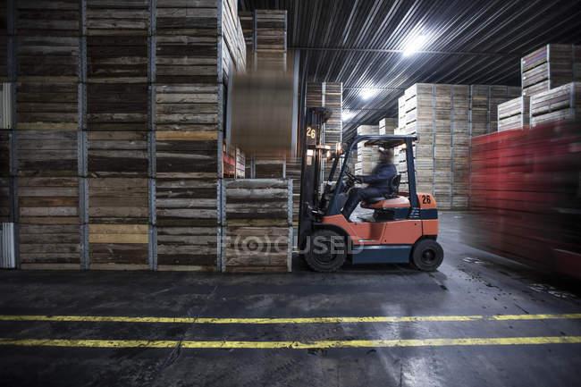 Чоловіки на handeling навантажувача машини і підйому фондовий ящиків розподілу заводі — стокове фото