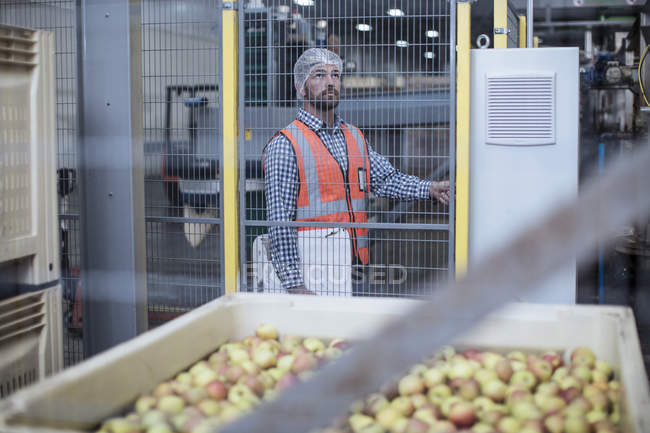 Inspector in apple distribution factory — Stock Photo