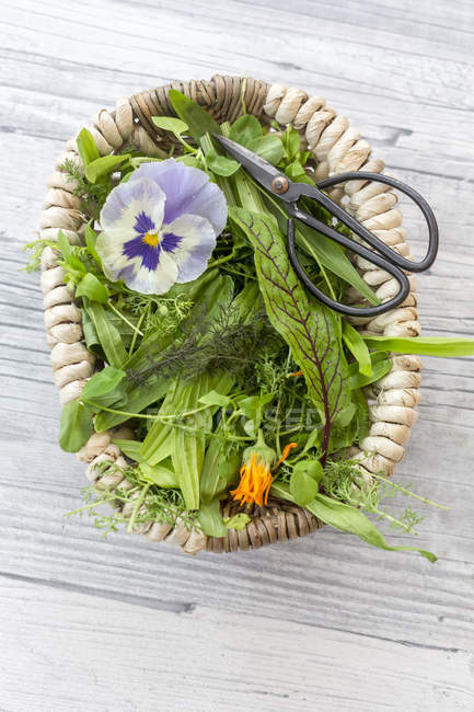 Basket of wild herbs and edible flowers — Stock Photo