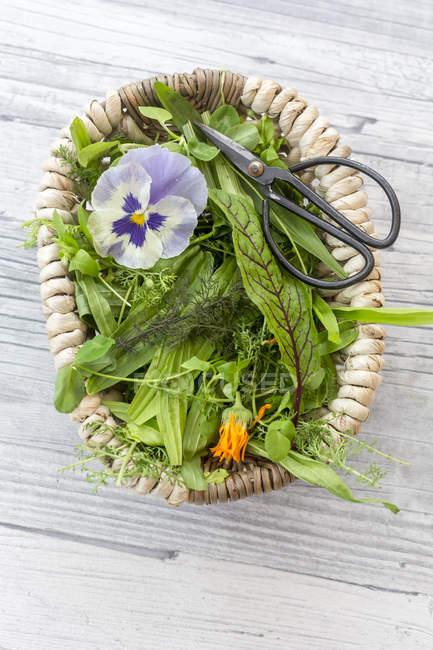 Корзина диких трав и съедобные цветы — стоковое фото