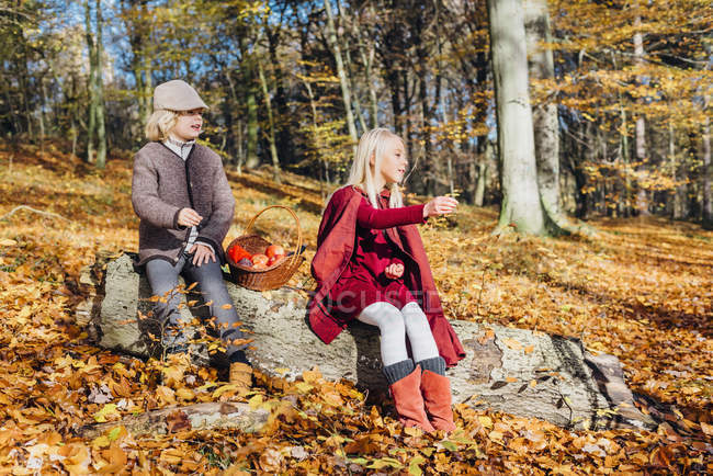 Hansel and Gretel, Boy and girl sitting in forest on a tree trunk — Stock Photo