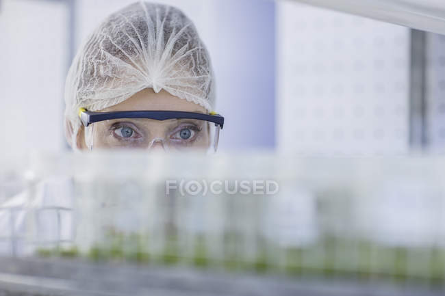 Woman in lab wearing protective clothing looking at plant samples — Stock Photo