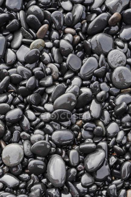 Background of black wet stones on beach — Stock Photo