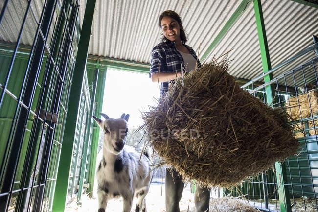 Жінки, що несе тюків сіна на фермі — стокове фото