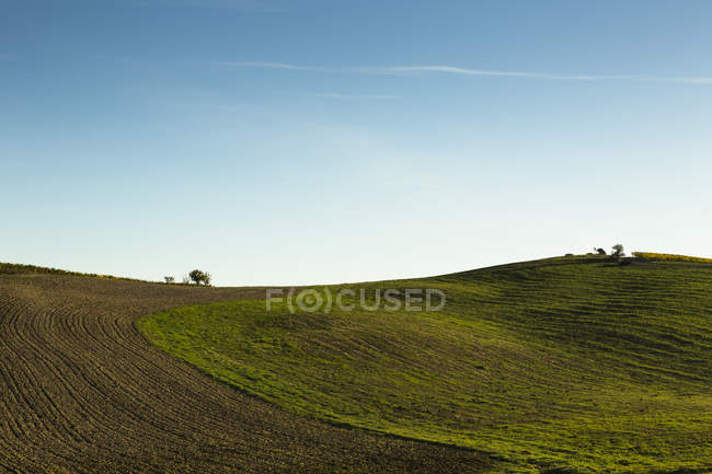 Italy, Tuscany, Val d'Orcia, rolling landscape during daytime — Stock Photo