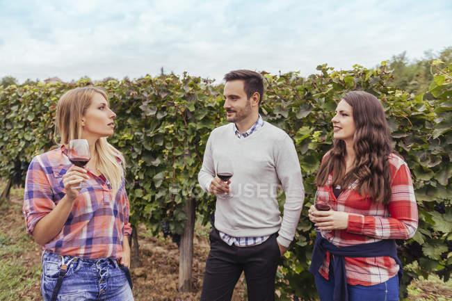 Freunde in einem Weinberg hält Gläser Rotwein — Stockfoto