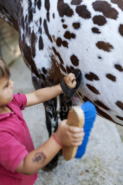 Close-up of Little boy grooming horse — Stock Photo