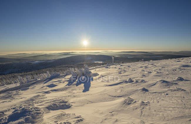 Parque Nacional Harz, Alemania, Sajonia-Anhalt, en invierno - foto de stock
