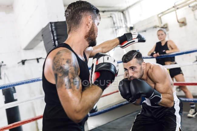 Kaukasische Boxer sparring mit Trainer im Boxring — Stockfoto