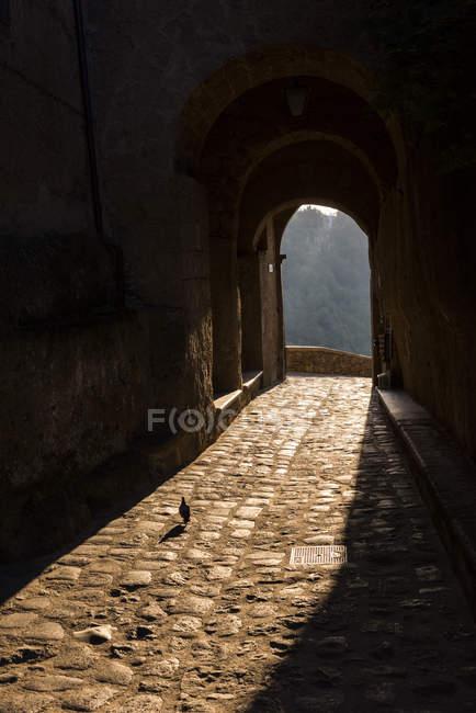 Italia, Lazio, arco en Civita di Bagnoregio al atardecer - foto de stock