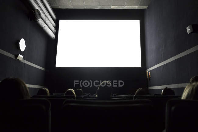 People watching a movie in a cinema — Stock Photo