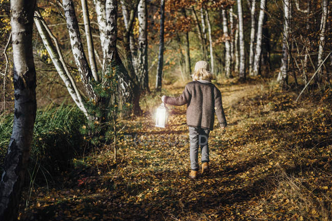 Hansel and Gretel, Boy walking in forest, carrying lantern — Stock Photo