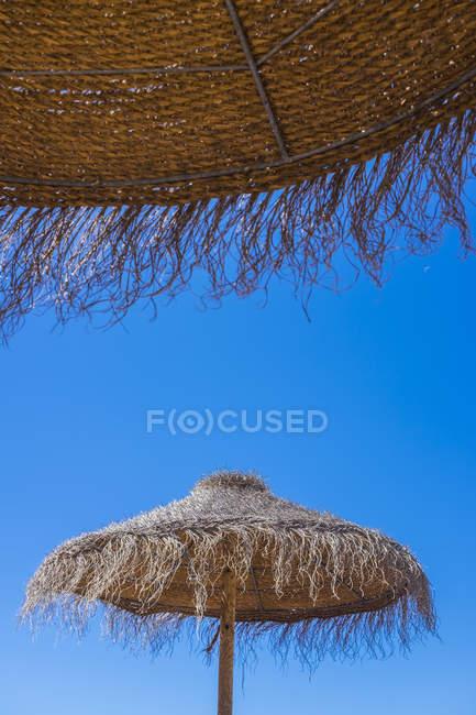 Парасольки проти синього неба — стокове фото
