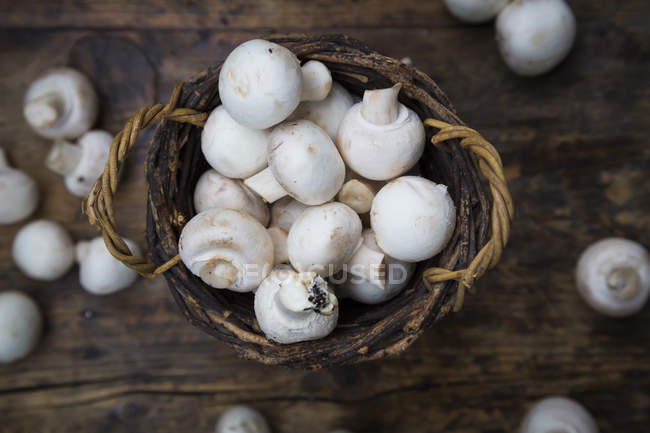 Wicker basket of organic champignons — Stock Photo