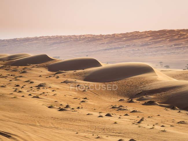 Omán, Al Raka, dunas en el desierto de Al Wahiba Rimal - foto de stock