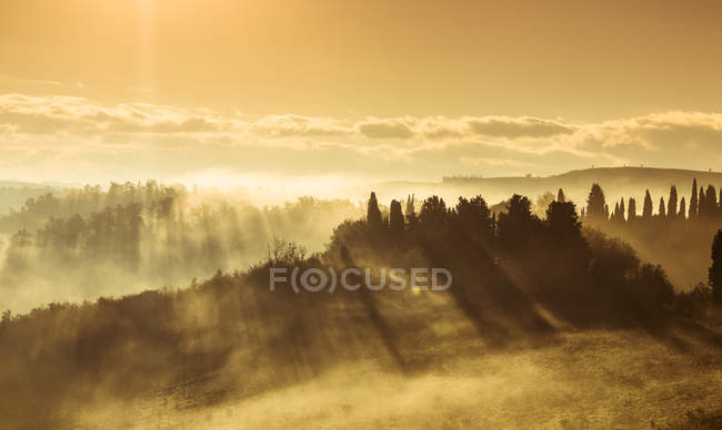 Italy, Tuscany, Val dOrcia, landscape in morning fog — Stock Photo