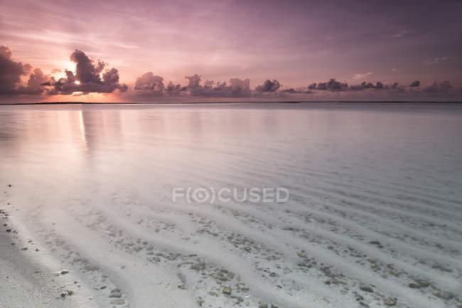 Тропічний острів з піщаним пляжем — стокове фото