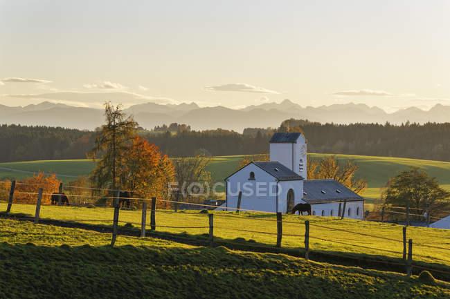 Германия, Хёэнрайн, сельская церковь в поле с броском лошадей — стоковое фото