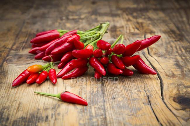 Fresh chili peppers — Stock Photo