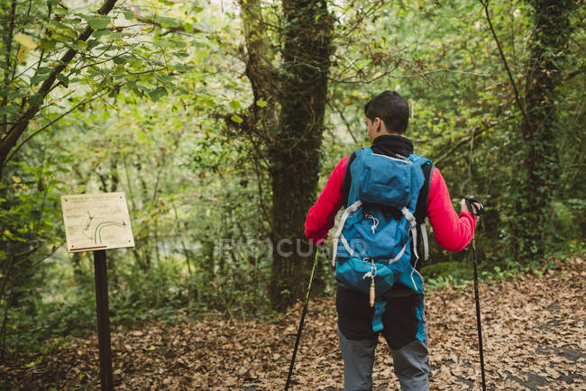 Hiker man looking at billboard in woods — Stock Photo