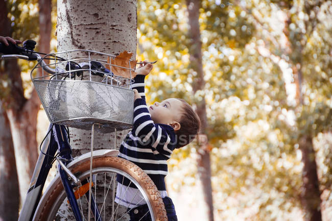 Toddler taking autumn leaf from bike — Stock Photo