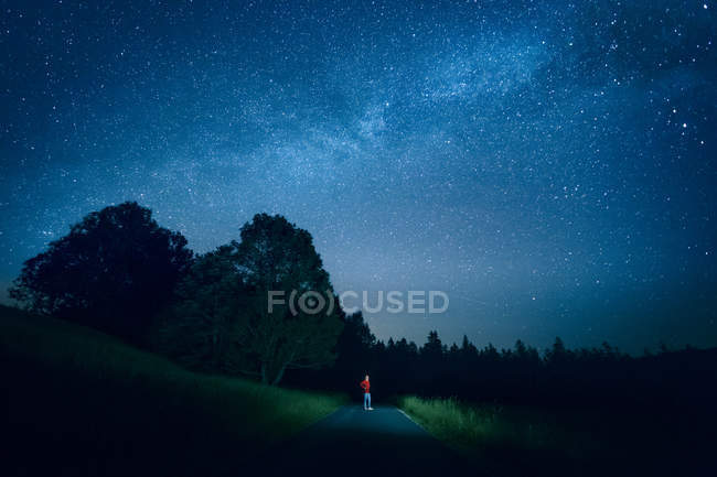 Distant view of man standing on lightened road near forest at night — Stock Photo
