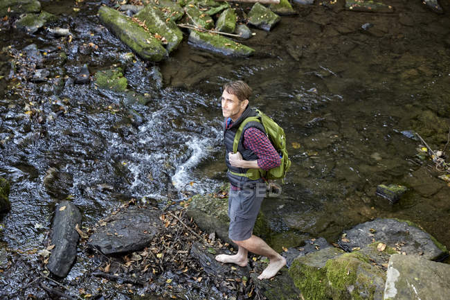 Hiker with backpack standing at brook in forest — Stock Photo