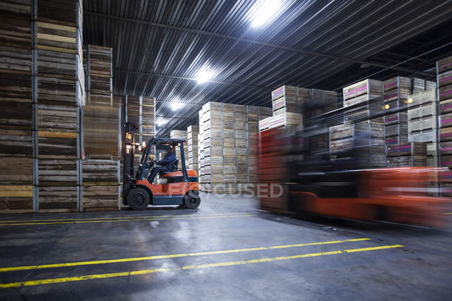Male on forklift machine handeling stock of crates in distribution factory — Stock Photo
