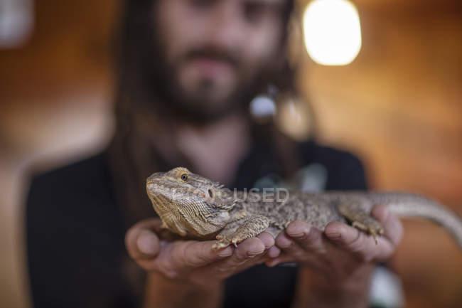 Closeup of man holding a bearded dragon — Stock Photo