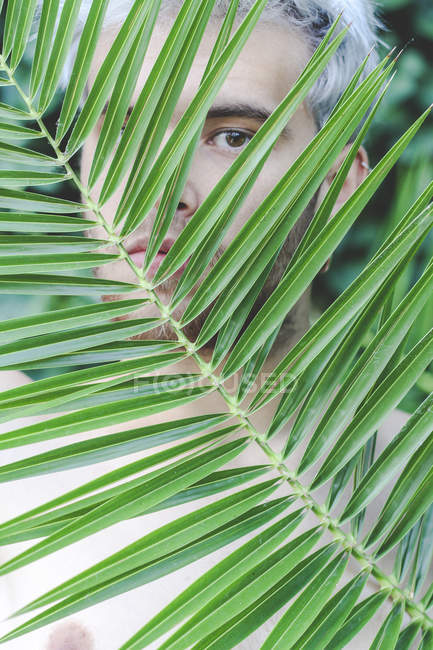 Portrait of naked young man behind palm leaf — Stock Photo