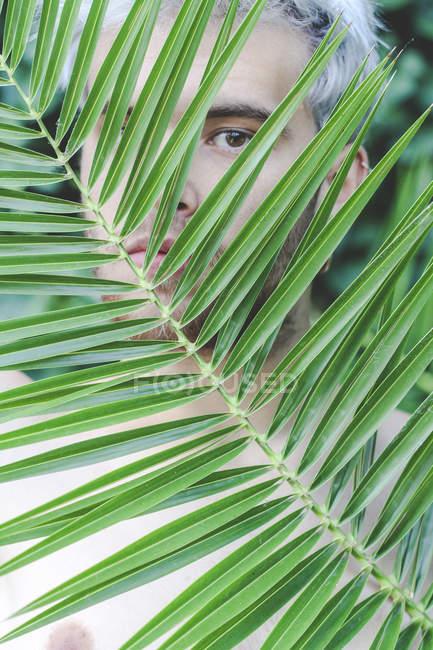 Портрет обнаженного молодого человека за пальмовым листом — стоковое фото