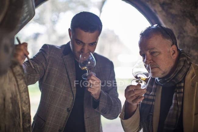 Два уверенных человека дегустируют виски на винокурне — стоковое фото