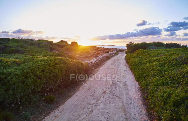 Италия, Фелиния, Нараку, прибрежная тропа на закате — стоковое фото