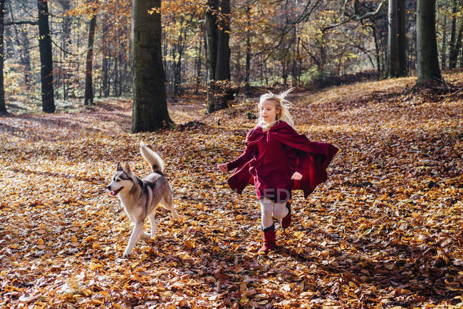 Red Riding Hood, Girl running in forest with husky — Stock Photo