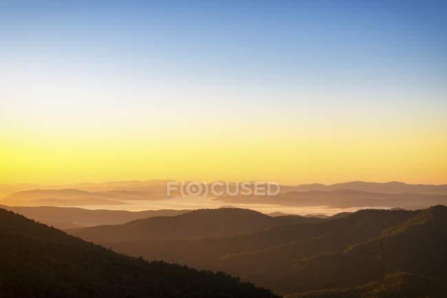 EUA, Carolina do Norte, Floresta Pisgah no início da manhã névoa — Fotografia de Stock