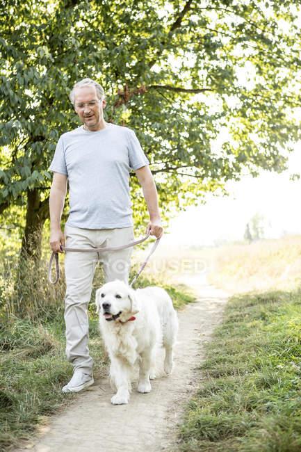 Homme âgé marchant avec chien de compagnie par le champ vert et les arbres — Photo de stock