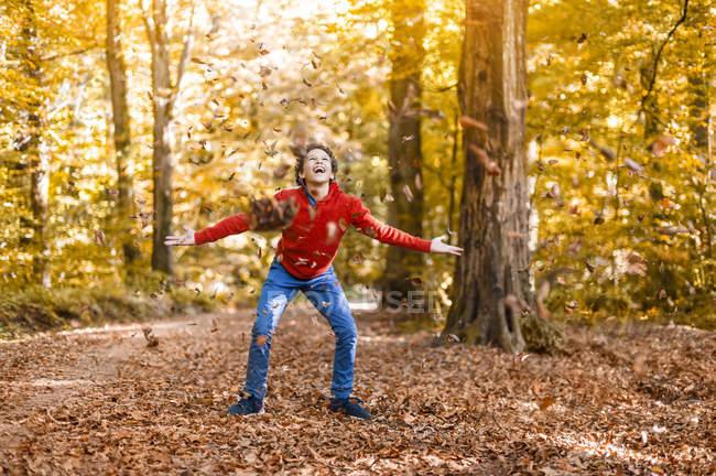 Улыбающийся мальчик бросает листья в воздух в осеннем лесу — стоковое фото