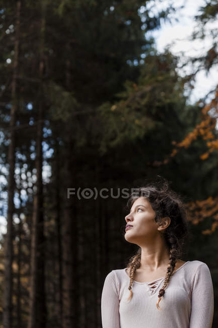 Portrait of young woman with braids in the woods — Stock Photo