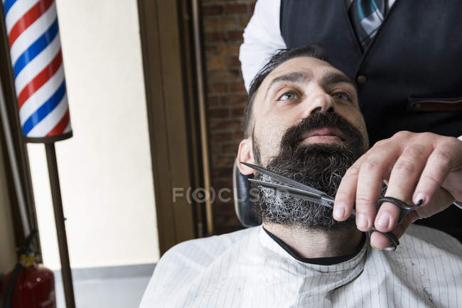 Barber cutting man beard in barbershop saloon — Stock Photo