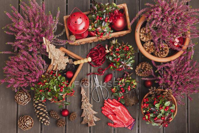 Encapsulamiento de brezo y Eastern teaberry en Navidad - foto de stock