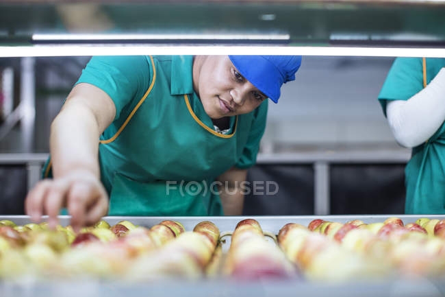 Female worker checking apples on conveyor belt in factory — Stock Photo