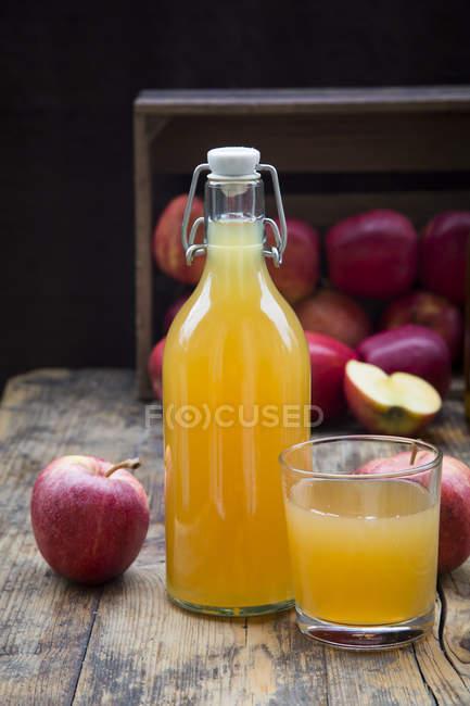 Garrafa e copo de suco de maçã — Fotografia de Stock