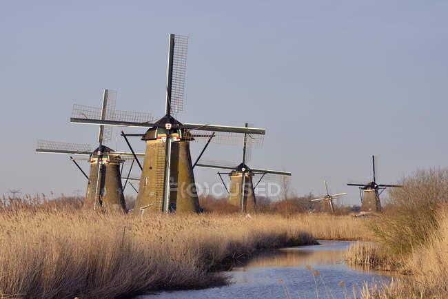 Molinos de viento en un canal, Kinderdijk - foto de stock