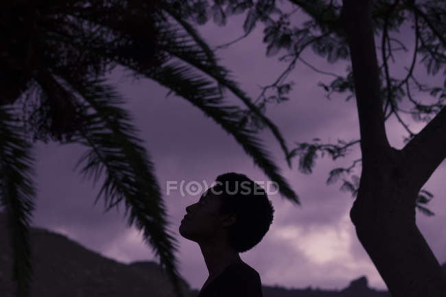 Silhouette of woman's head in nature — Stock Photo