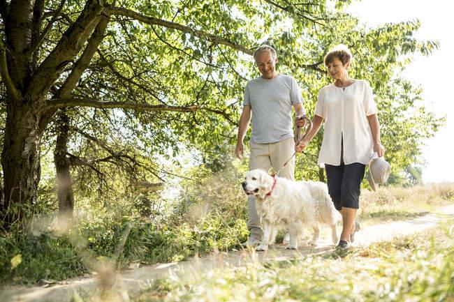 Pareja mayor con perro de compañía paseando al aire libre en naturaleza verde - foto de stock