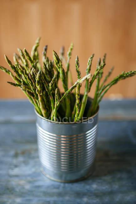 Asparagi verdi in latta — Foto stock